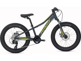 Specialized Riprock 20 Boy's