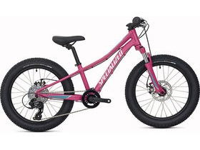 Specialized Riprock 20 Girl's